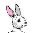 yjun yang's avatar