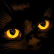 Monter XZ's avatar